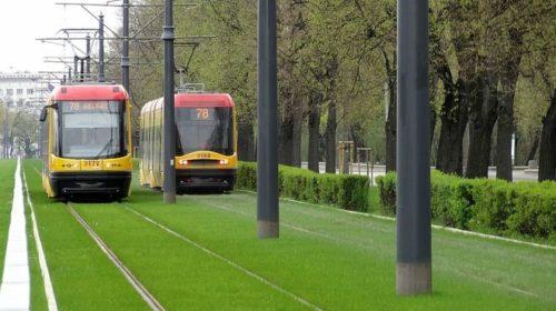 В Украине начнут сеять газоны на трамвайных путях