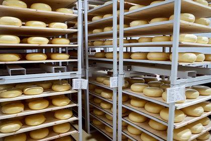 Назван самый вкусный сыр в России