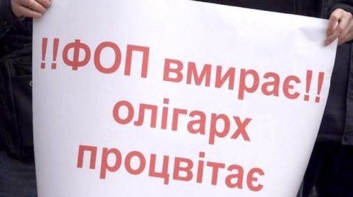 Зеленский ответил на протесты ФЛП временным мораторием на проверки