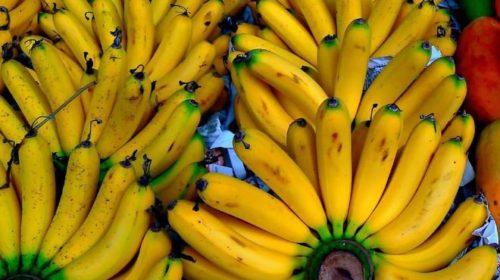Украина стала тратить больше валюты на бананы