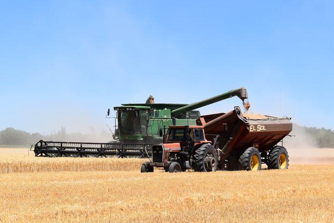 Из Украины вывели $1,5 млрд прибыли от экспорта сельхозпродукции - исследование