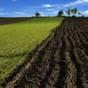 Милованов: за три года сельскохозяйственных госземель стало меньше на 10%