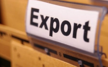 На компенсацию транспортных затрат подали заявки 205 компаний-экспортеров