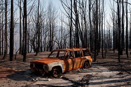 Миру предрекли убытки в триллионы из-за проблем с экологией