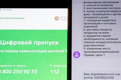 Российский регион ввел электронные пропуска для передвижения